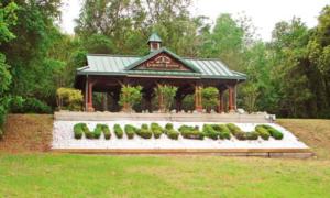 Geo-Minneola